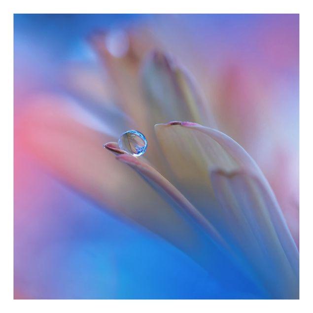 Alu-Dibond Bild - Touch Me Softly