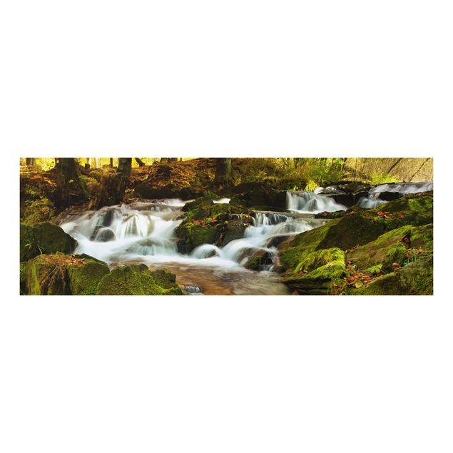 Alu-Dibond Bild - Wasserfall herbstlicher Wald