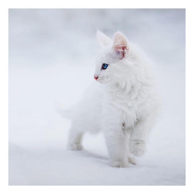 Alu-Dibond Bild - Weiß wie Schnee