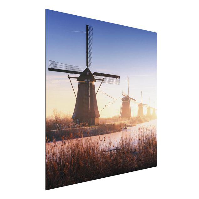 Alu-Dibond Bild - Windmühlen von Kinderdijk