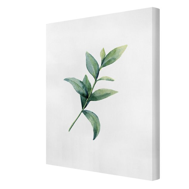 Leinwandbild - Aquarell Eucalyptus II - Hochformat 3:4