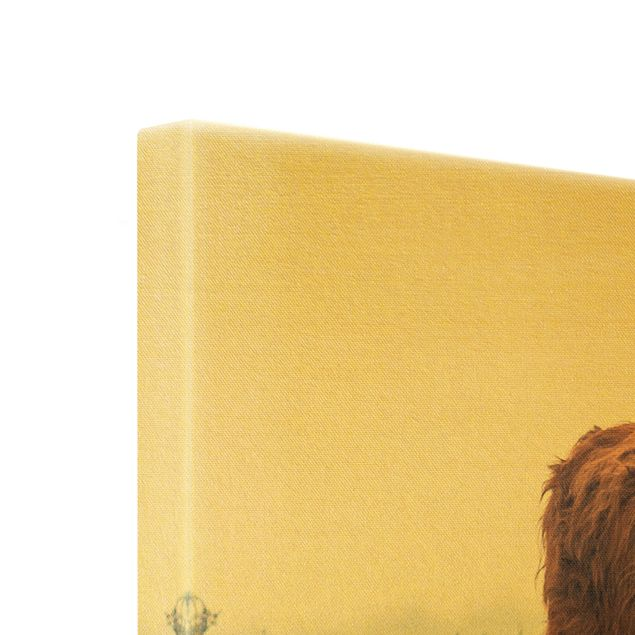 Leinwandbild Gold - Bison in den Highlands - Querformat 2:1