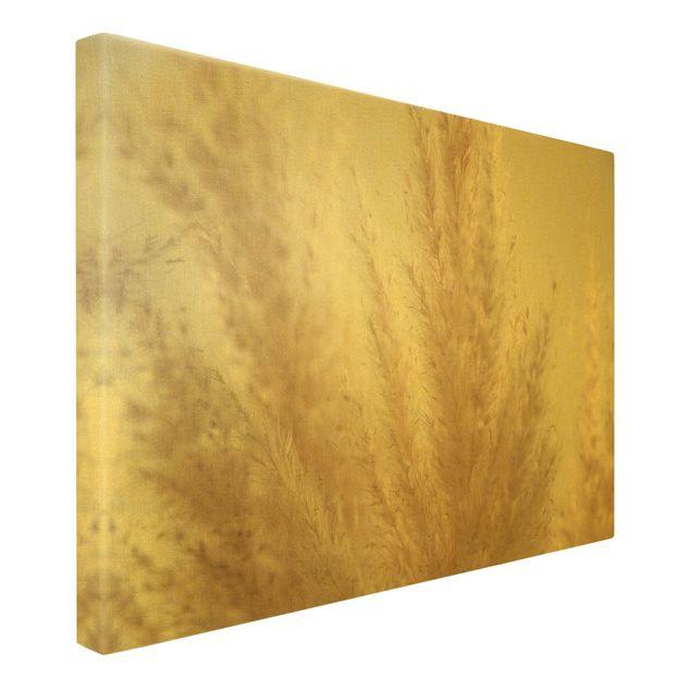 Leinwandbild Gold - Zartes Pampasgras Close Up - Querformat 3:2
