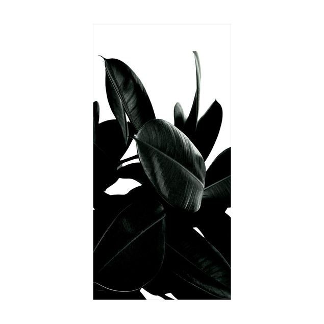 Vinyl-Teppich - Gummibaum Blätter Dunkelgrün - Hochformat 1:2