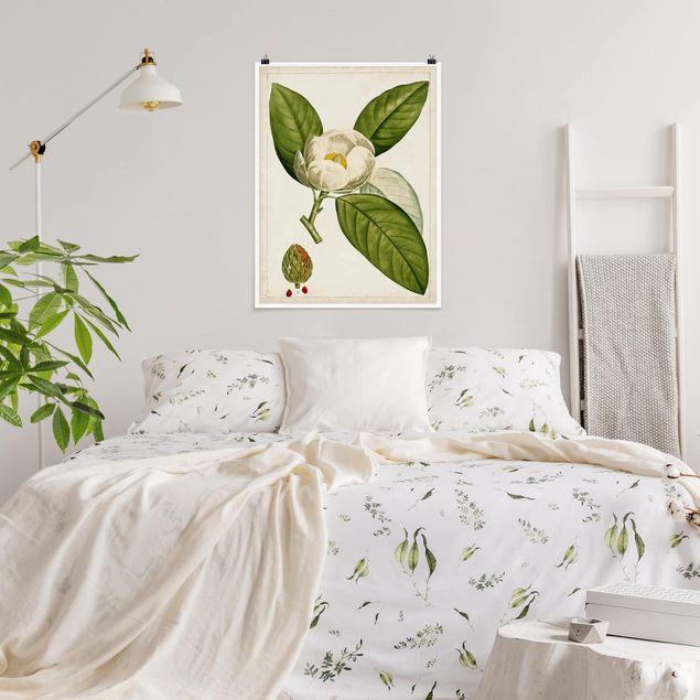 Poster - Tableau Blatt Blüte Frucht II - Hochformat 3:4