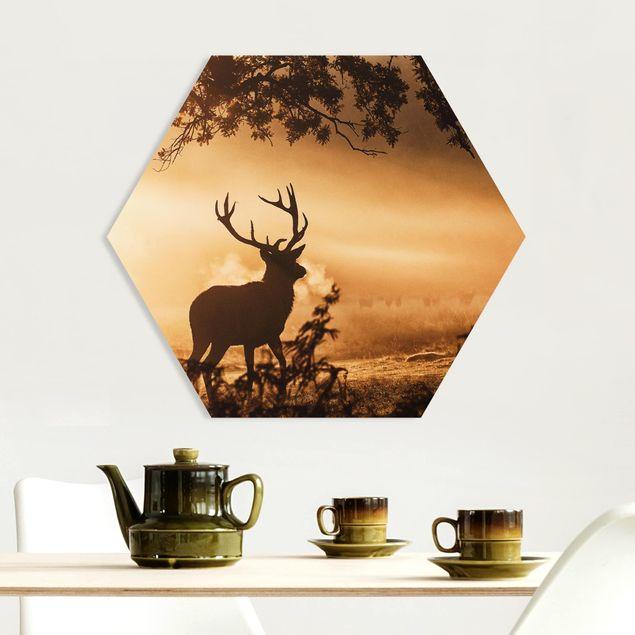 Hexagon Bild Forex - Hirsch im Winterwald