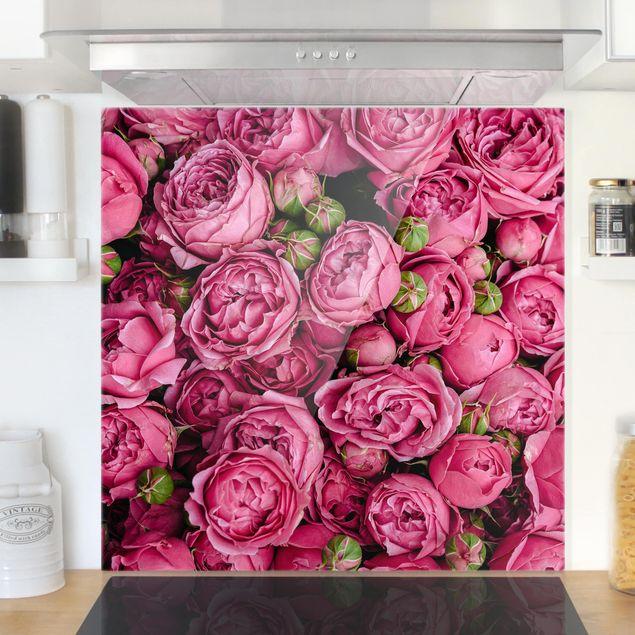 Glas Spritzschutz - Pinke Pfingstrosen - Quadrat - 1:1