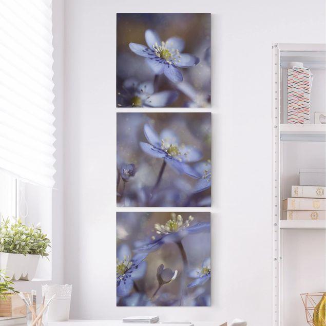 Leinwandbild 3-teilig - Anemonen in Blau - Quadrate 1:1