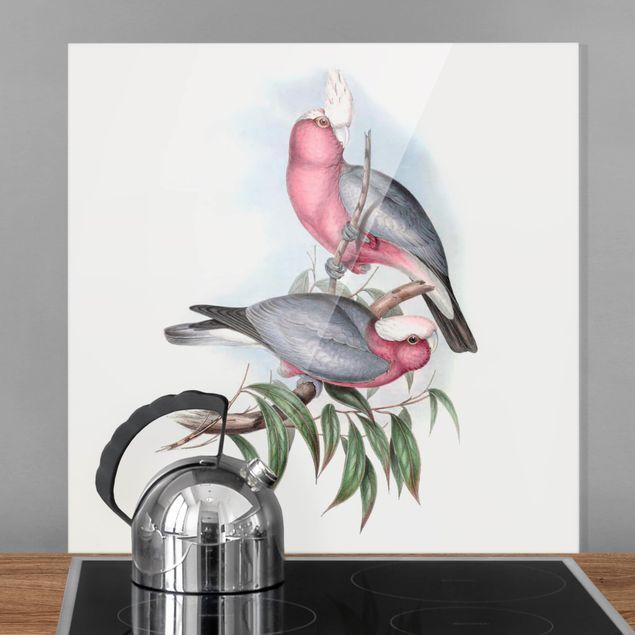 Glas Spritzschutz - Pastell Papageien II - Quadrat - 1:1