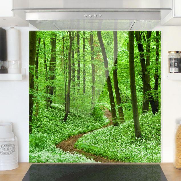 Glas Spritzschutz - Romantischer Waldweg - Quadrat - 1:1