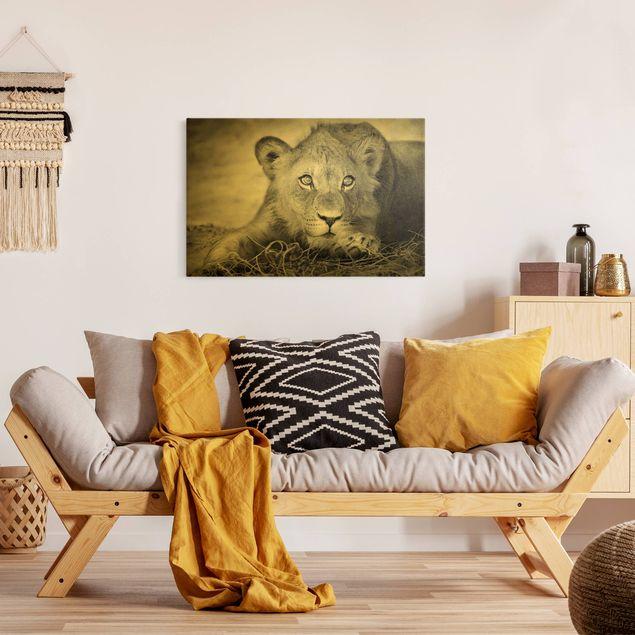 Leinwandbild Gold - Lurking Lionbaby - Querformat 3:2