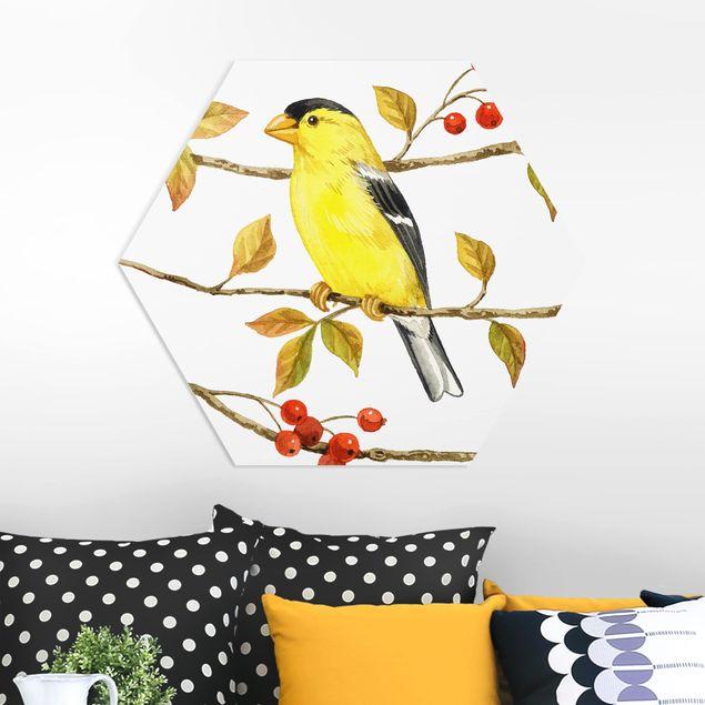 Hexagon Bild Forex - Vögel und Beeren - Goldzeisig