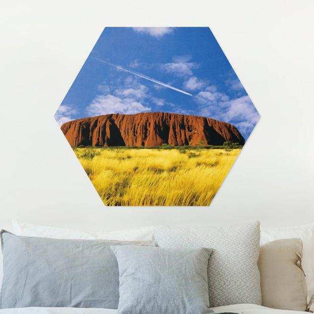 Hexagon Bild Alu-Dibond - Uluru