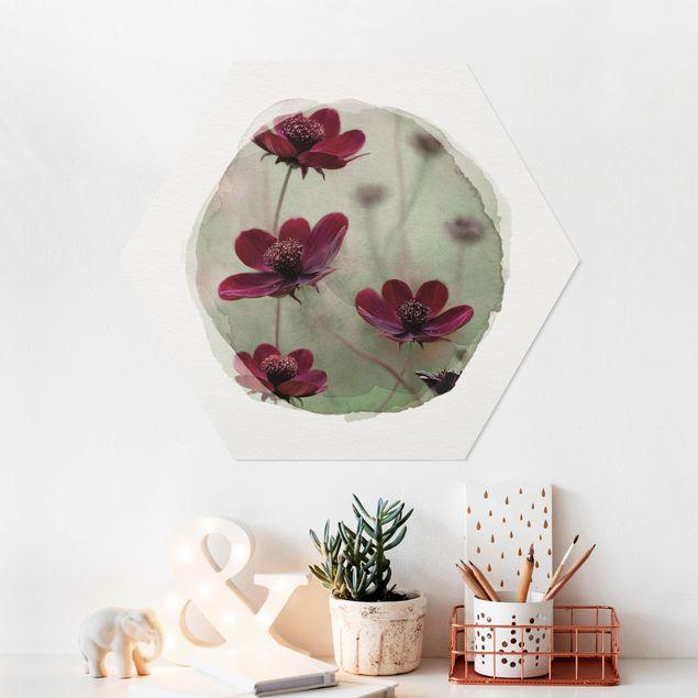 Hexagon Bild Forex - Wasserfarben - Pinke Kosmeen