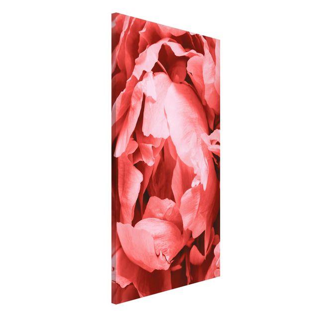 Magnettafel - Pfingstrose Blüte Koralle - Memoboard Hochformat 4:3