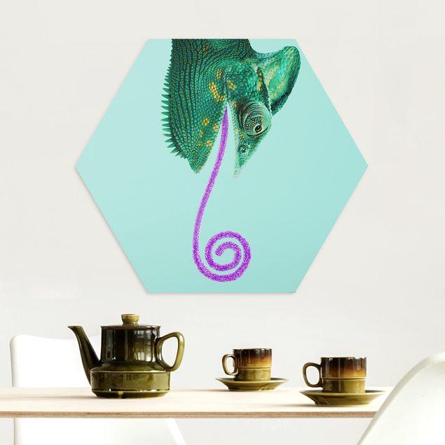 Hexagon Bild Alu-Dibond - Jonas Loose - Chamäleon mit Zuckerzunge