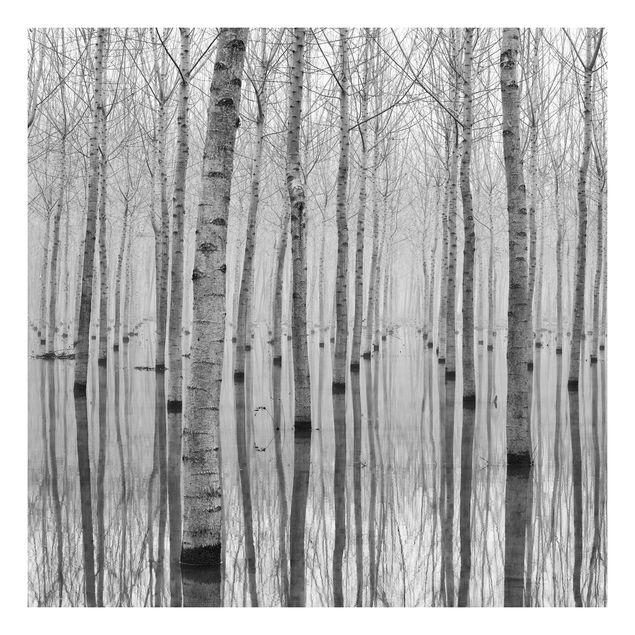 Beistelltisch - Birken im November