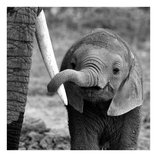 Beistelltisch - Elefantenbaby
