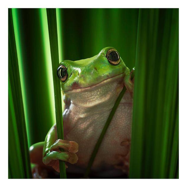 Beistelltisch - Fröhlicher Frosch