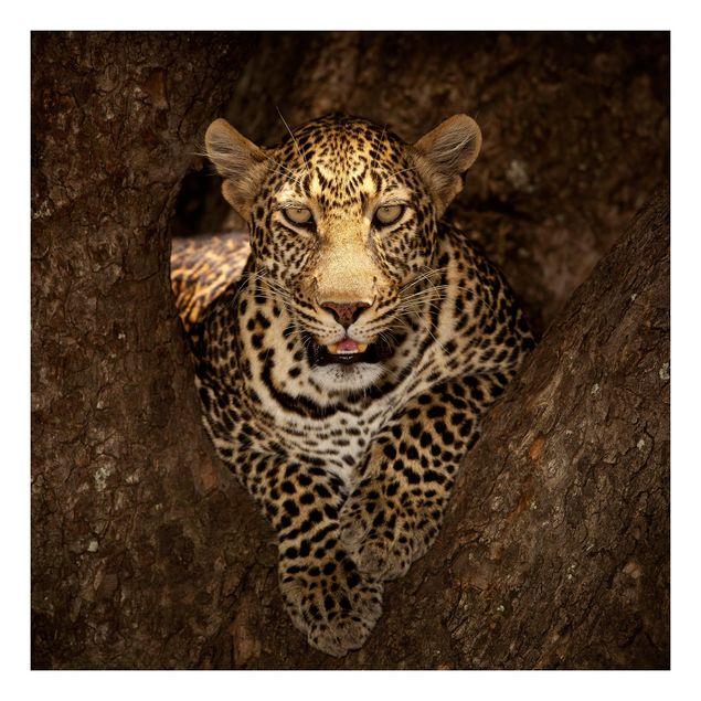 Beistelltisch - Leopard ruht auf einem Baum