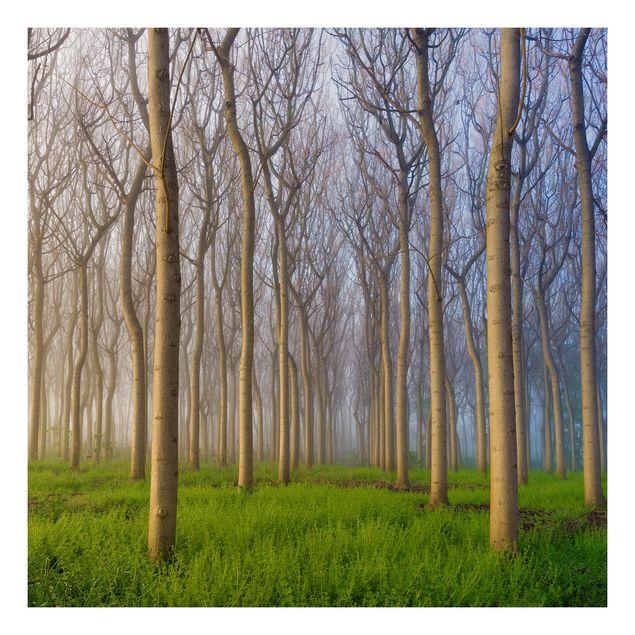Beistelltisch - Morgen im Wald