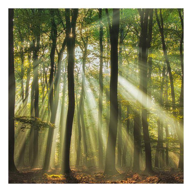 Beistelltisch - Sonnentag im Wald