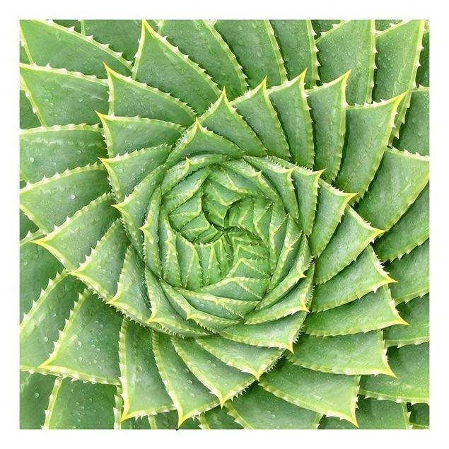 Beistelltisch - Spiral Aloe