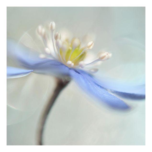 Beistelltisch - Tanzende Anemonen