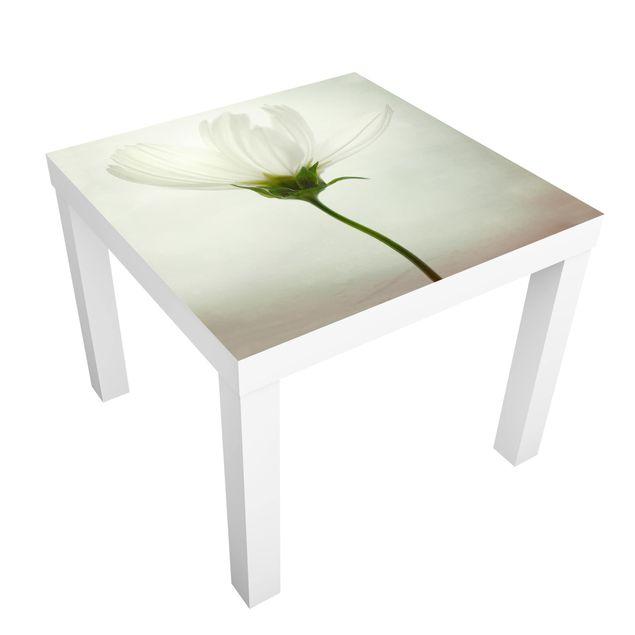 Beistelltisch - Weiße Cosmea