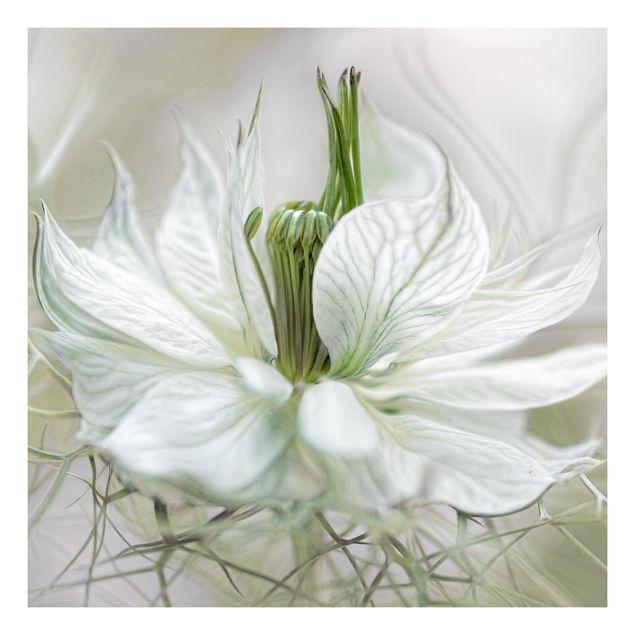 Beistelltisch - Weiße Nigella