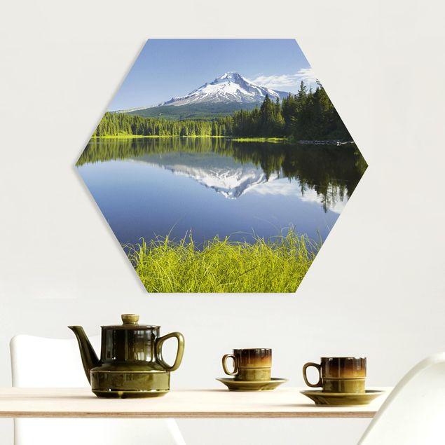 Hexagon Bild Forex - Vulkan mit Wasserspiegelung