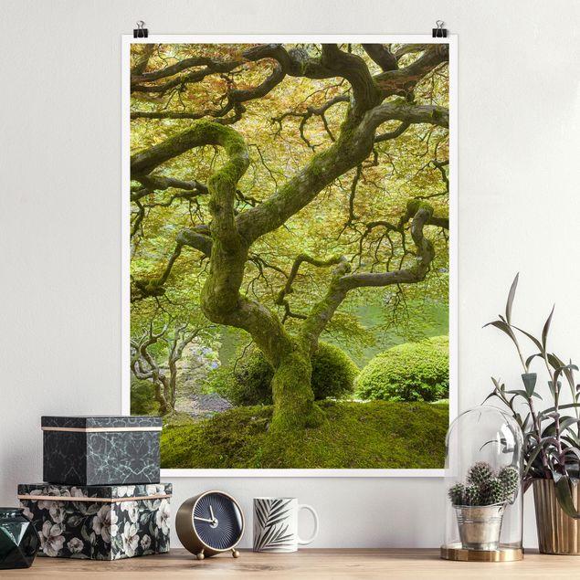 Poster - Grüner Japanischer Garten - Hochformat 3:4