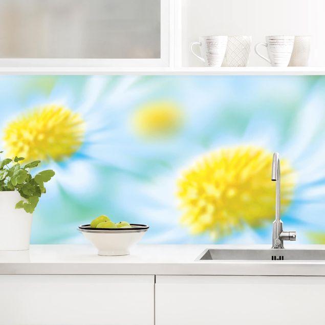 Küchenrückwand - Daisy