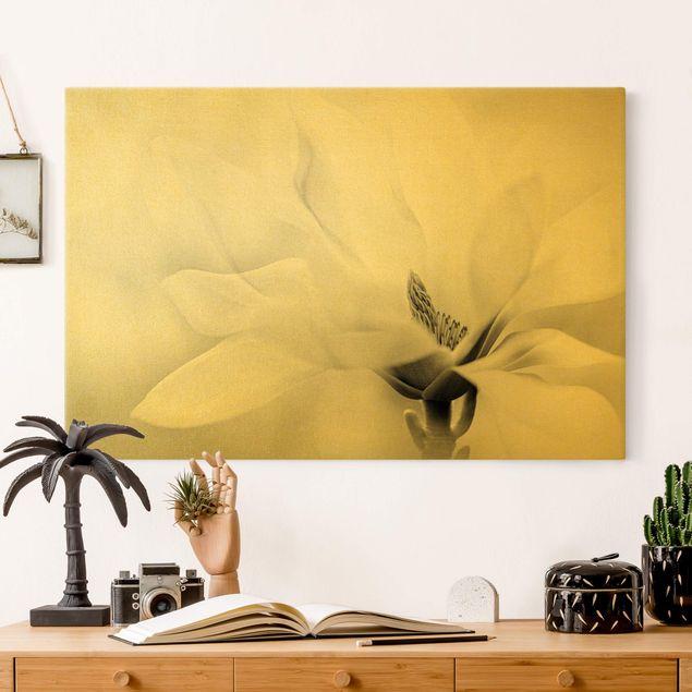 Leinwandbild Gold - Zarte Magnolienblüte Schwarz-Weiß - Querformat 3:2
