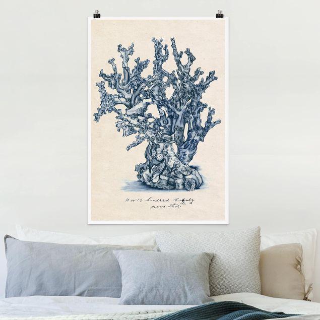 Poster - Meereskorallen Studie II - Hochformat 3:2