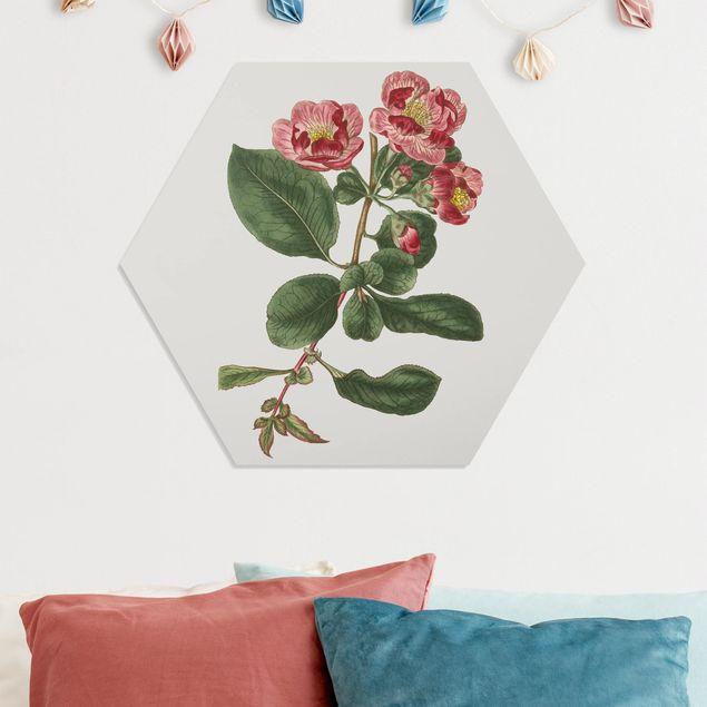 Hexagon Bild Forex - Florale Schmuckstücke I