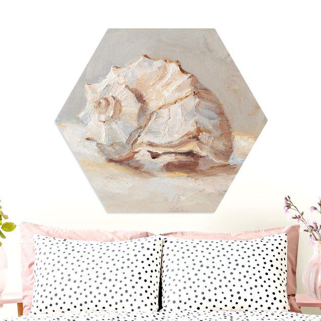 Hexagon Bild Forex - Muschel-Studie II