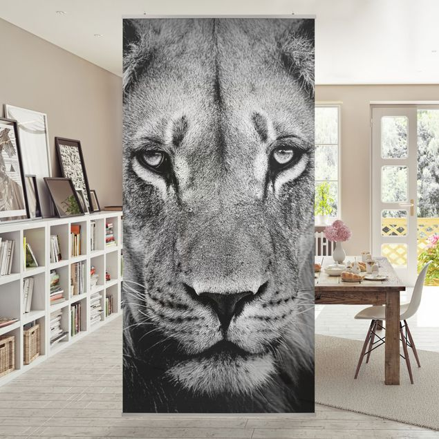 Raumteiler - Alter Löwe 250x120cm