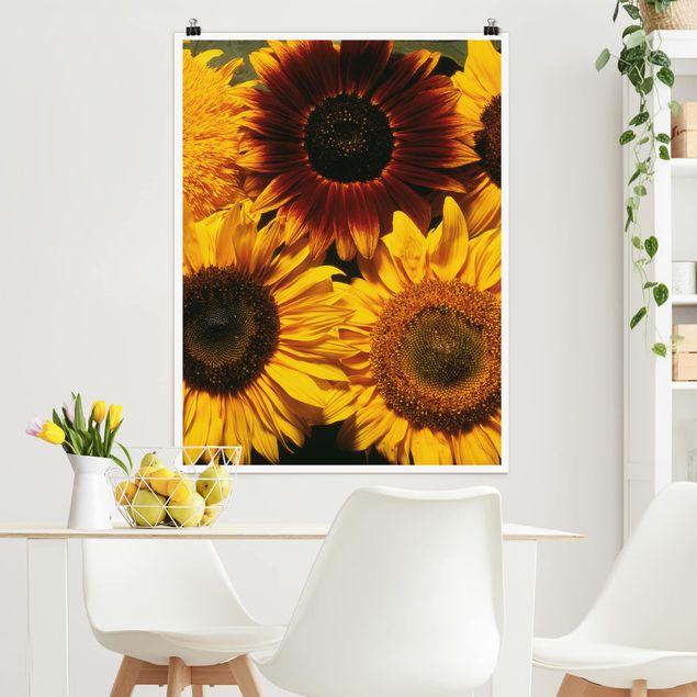 Poster - Sunflowers - Hochformat 3:4