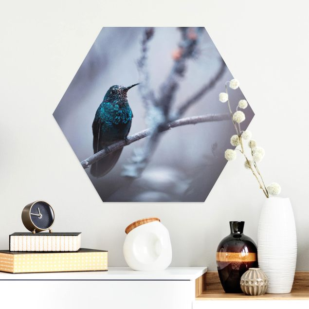 Hexagon Bild Alu-Dibond - Kolibri im Winter