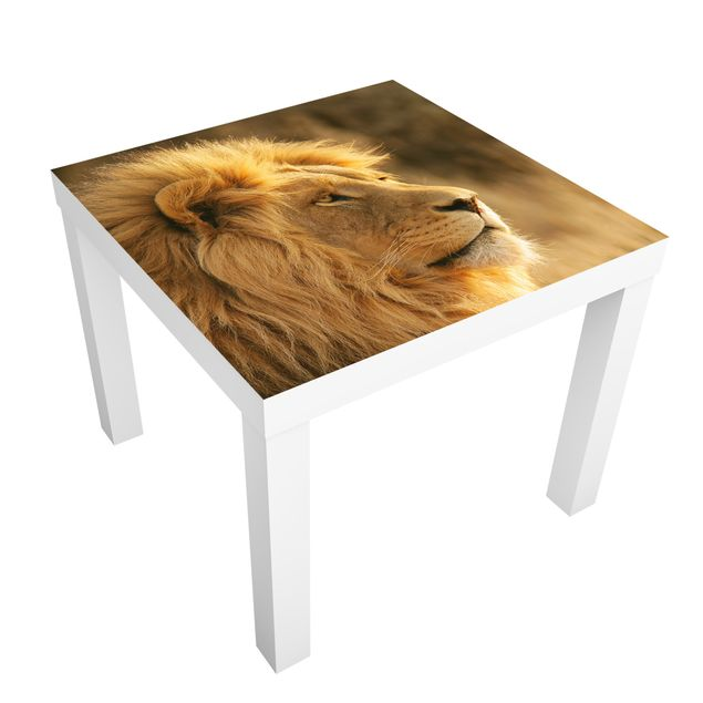 Möbelfolie für IKEA Lack - Klebefolie Löwenkönig