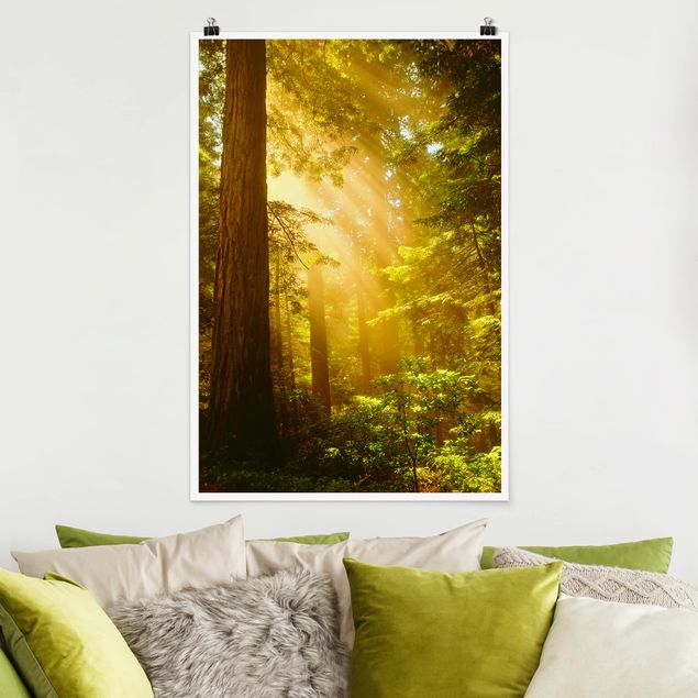 Poster - Morgengold - Hochformat 3:2