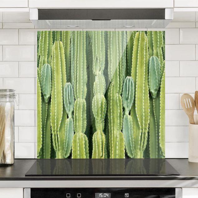 Glas Spritzschutz - Kaktus Wand - Quadrat - 1:1