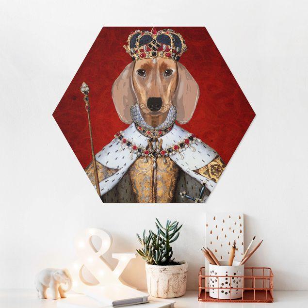 Hexagon Bild Forex - Tierportrait - Dackelkönigin