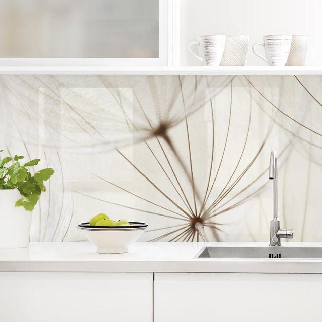 Küchenrückwand - Sanfte Gräser