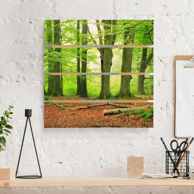 Holzbild - Mighty Beech Trees - Quadrat 1:1