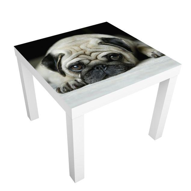 Möbelfolie für IKEA Lack - Klebefolie Pug Loves You