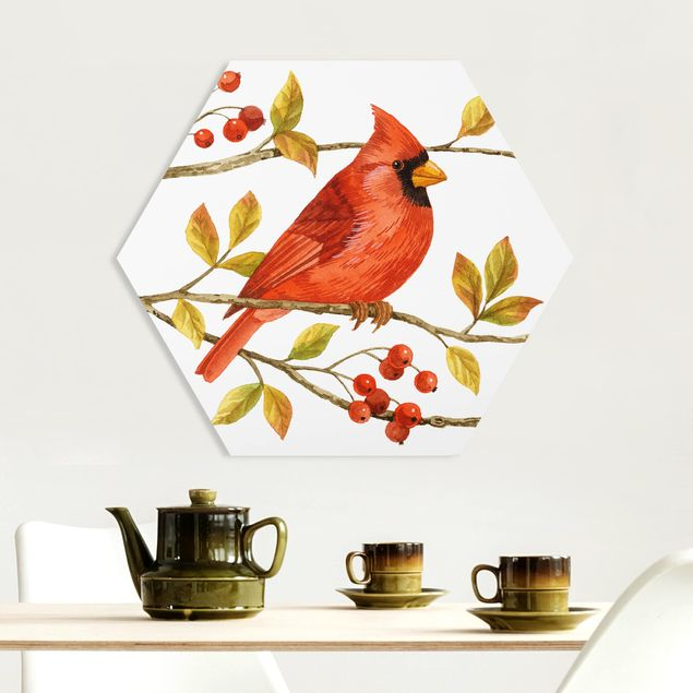 Hexagon Bild Forex - Vögel und Beeren - Rotkardinal