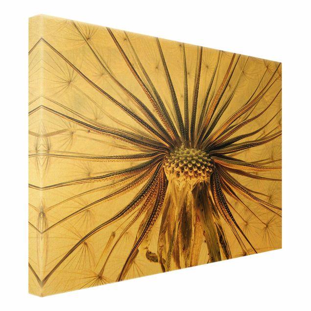 Leinwandbild Gold - Dandelion Close Up - Querformat 4:3
