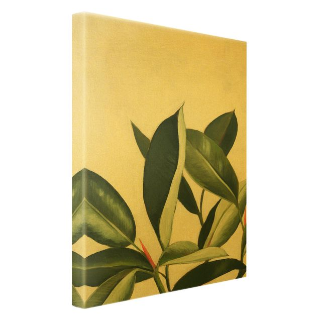 Leinwandbild Gold - Lieblingspflanzen - Gummibaum - Hochformat 2:3